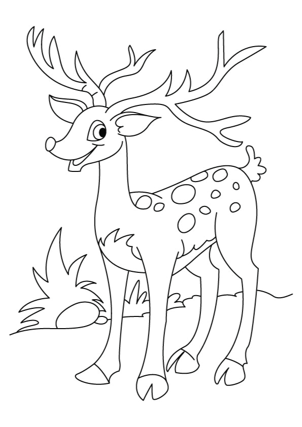 deer-coloring-page-0020-q2
