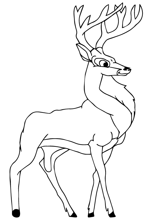 deer-coloring-page-0031-q2