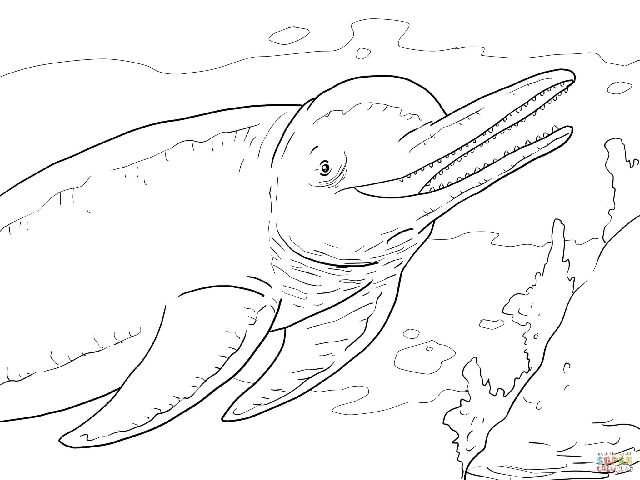 dolphin-coloring-page-0002-q1