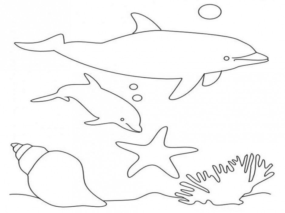 dolphin-coloring-page-0032-q1