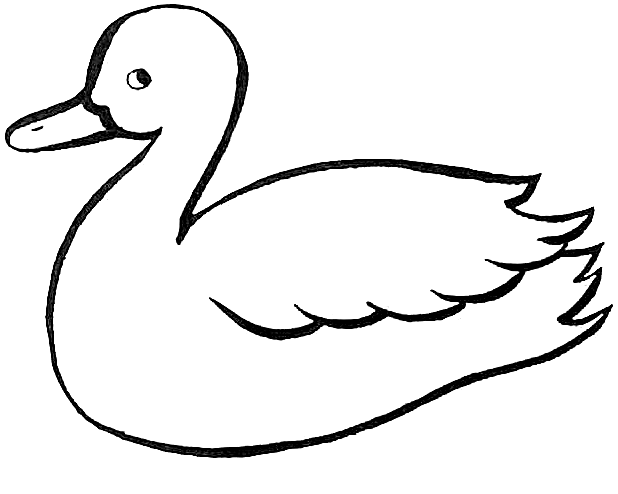 duck-coloring-page-0015-q1