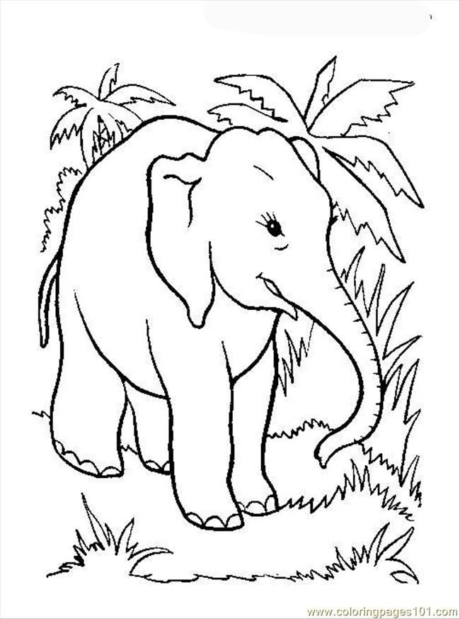 elephant-coloring-page-0018-q1