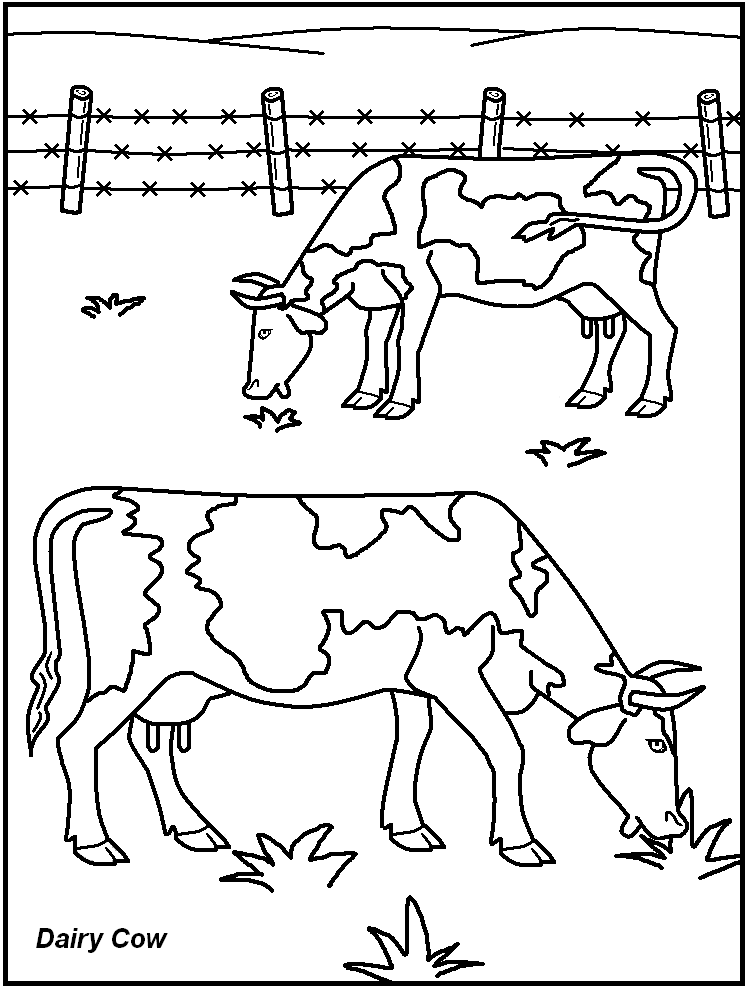 farm-animal-coloring-page-0004-q1