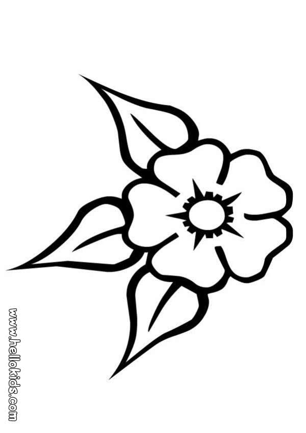 flower-coloring-page-0028-q1