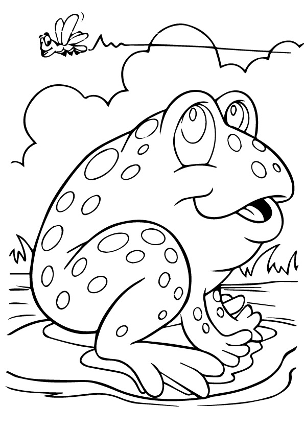 frog-coloring-page-0008-q2