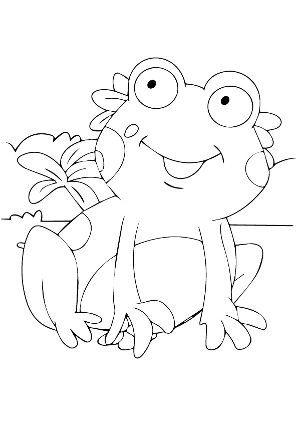frog-coloring-page-0024-q2