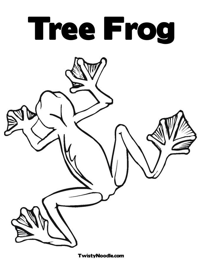 frog-coloring-page-0026-q1
