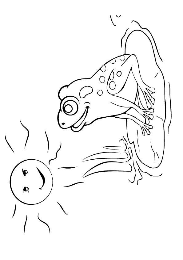 frog-coloring-page-0027-q2