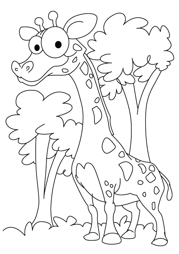 giraffe-coloring-page-0006-q2