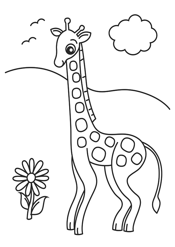 giraffe-coloring-page-0011-q2