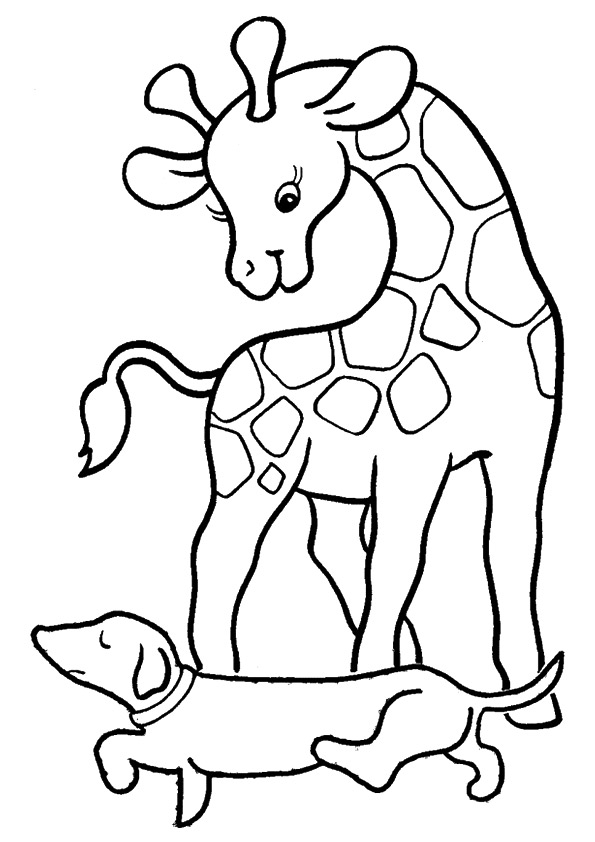 giraffe-coloring-page-0013-q2