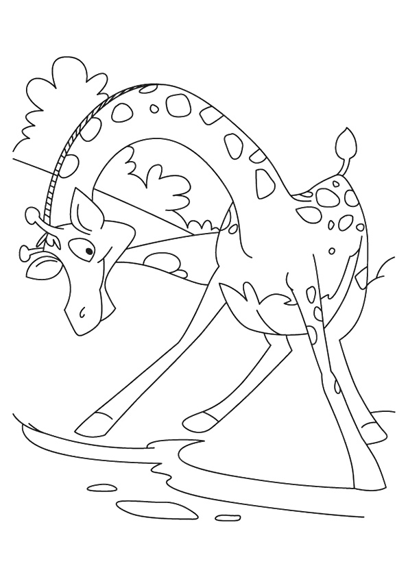 giraffe-coloring-page-0018-q2