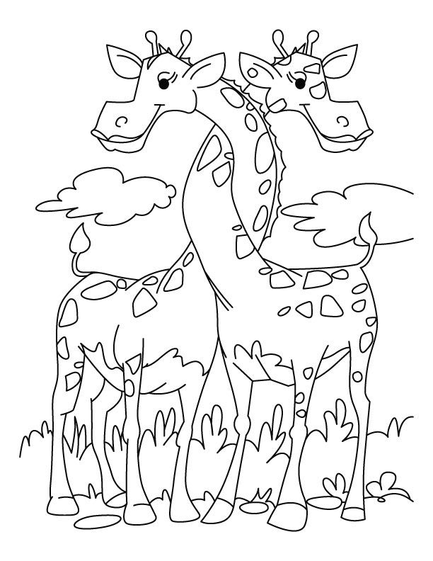 giraffe-coloring-page-0027-q1