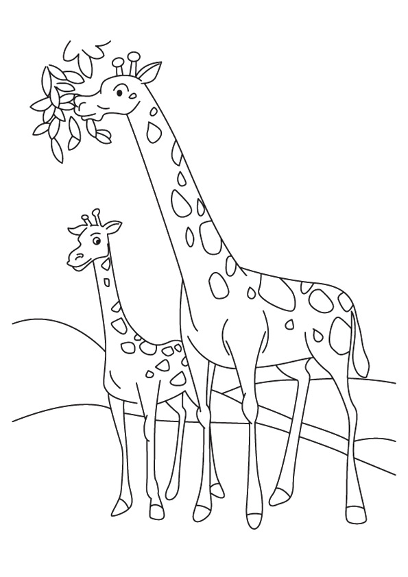 giraffe-coloring-page-0031-q2