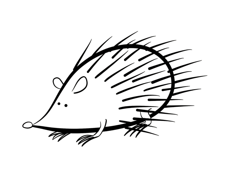 hedgehog-coloring-page-0008-q1