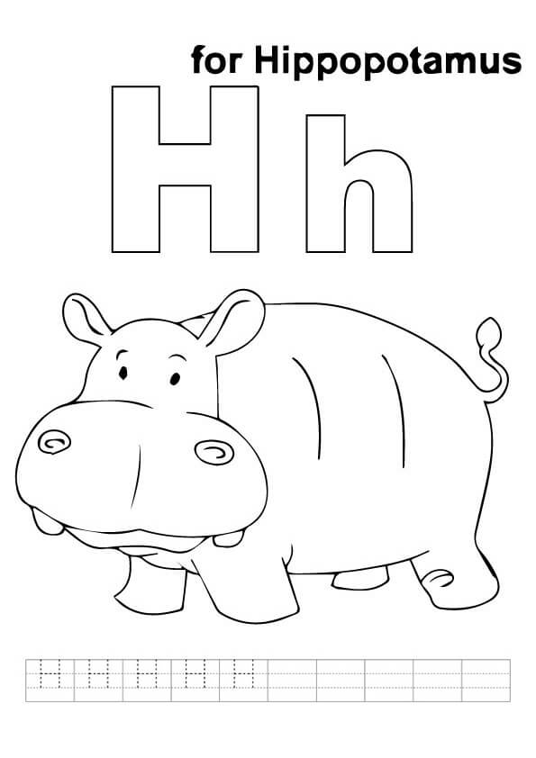 hippo-coloring-page-0019-q2