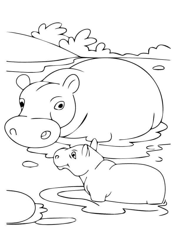 hippo-coloring-page-0021-q2