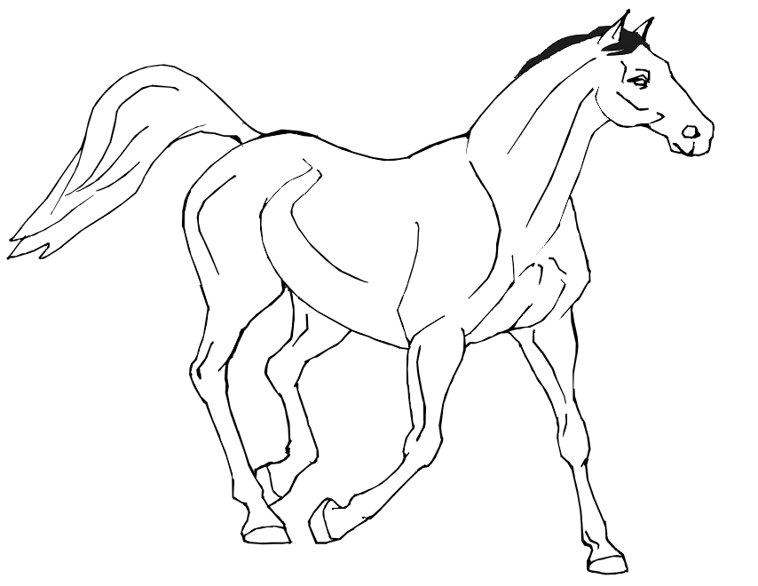 horse-coloring-page-0031-q1