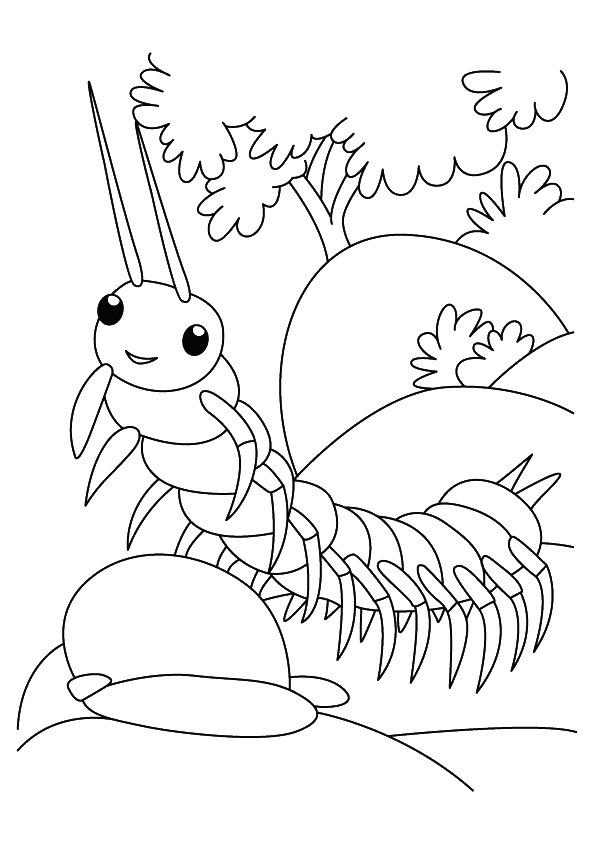 insect-coloring-page-0009-q2