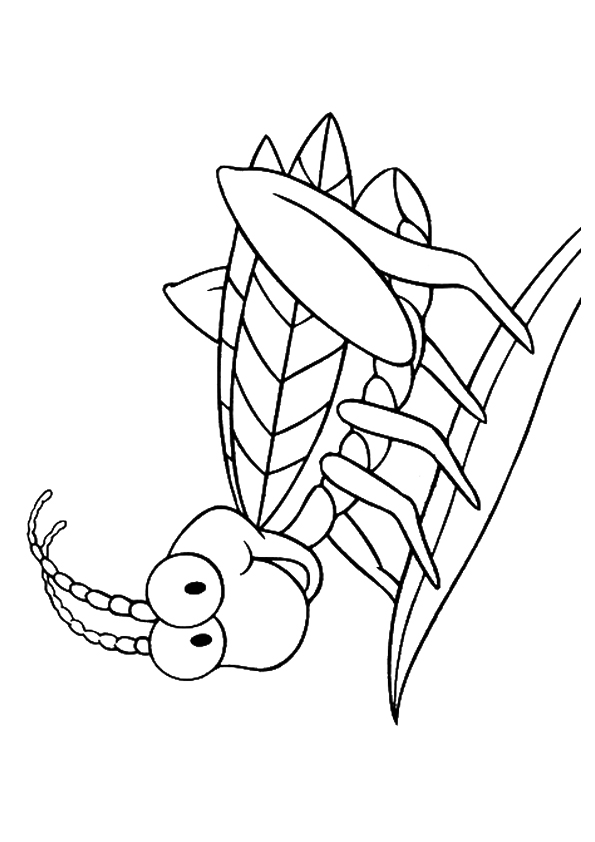 insect-coloring-page-0013-q2