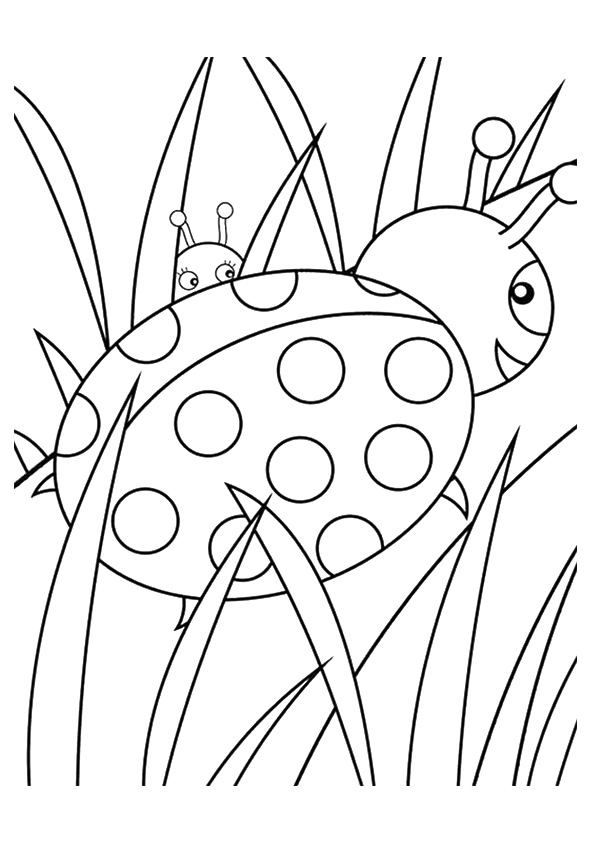 insect-coloring-page-0015-q2