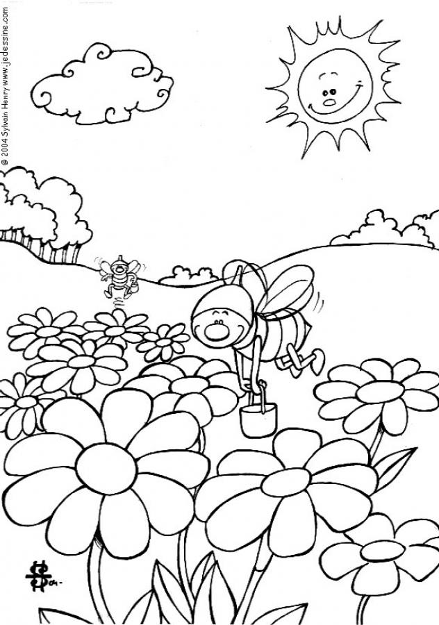 insect-coloring-page-0021-q1