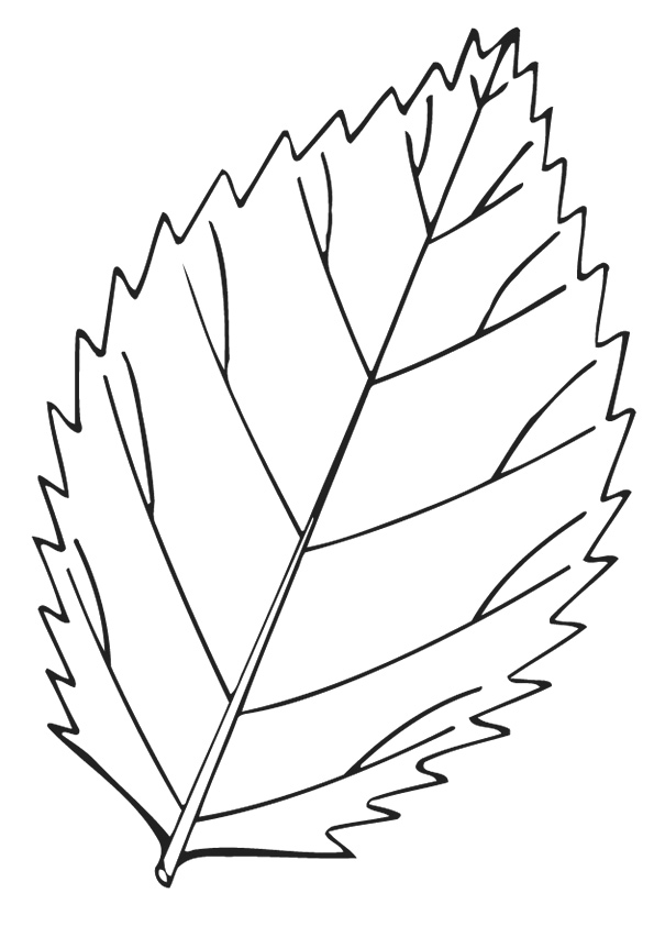 leaf-coloring-page-0016-q2