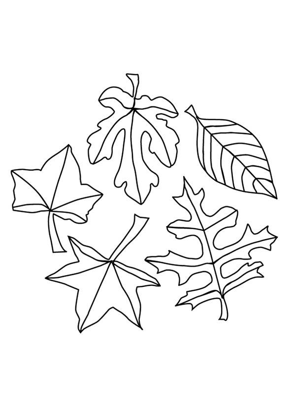 leaf-coloring-page-0022-q2