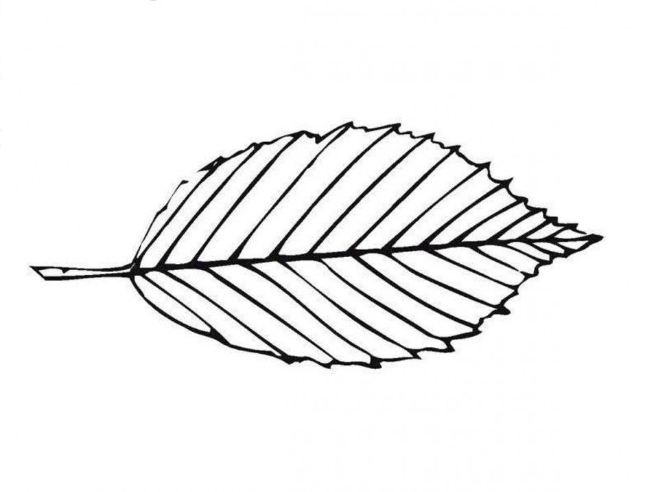 leaf-coloring-page-0031-q1