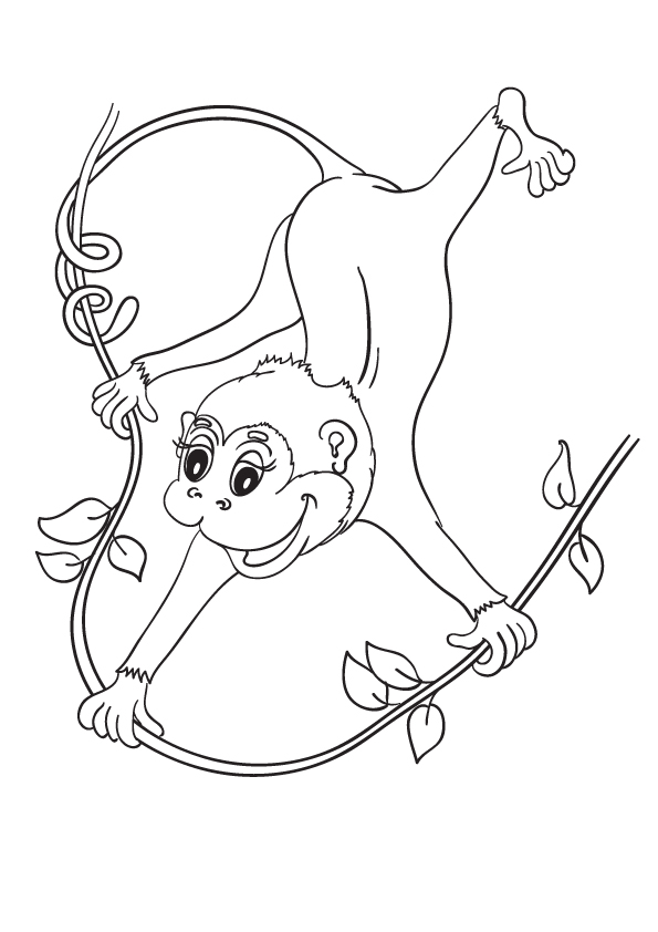 monkey-coloring-page-0005-q2