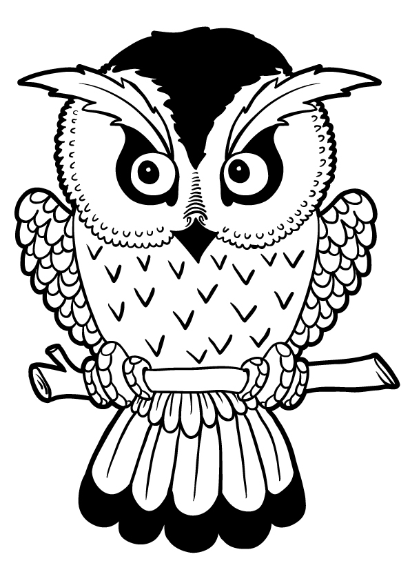 owl-coloring-page-0007-q2