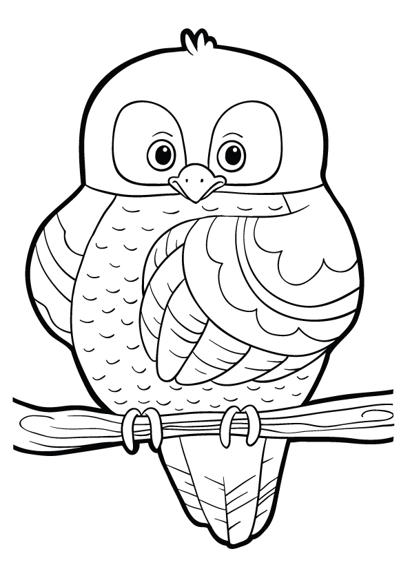 owl-coloring-page-0009-q2