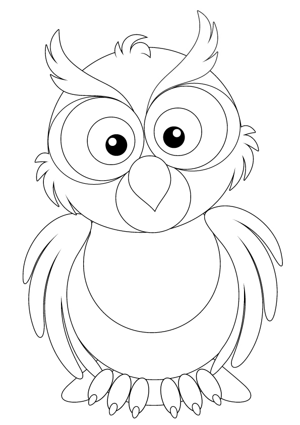 owl-coloring-page-0012-q2