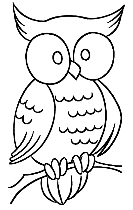 owl-coloring-page-0016-q2