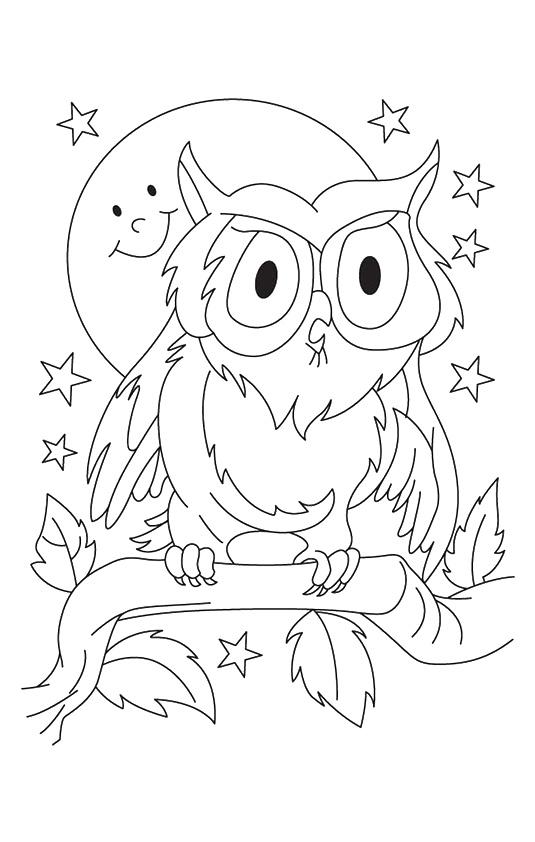 owl-coloring-page-0018-q2