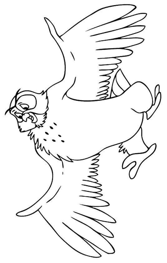 owl-coloring-page-0019-q2