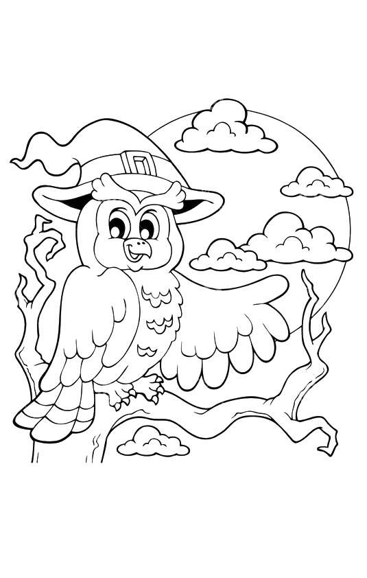 owl-coloring-page-0020-q2