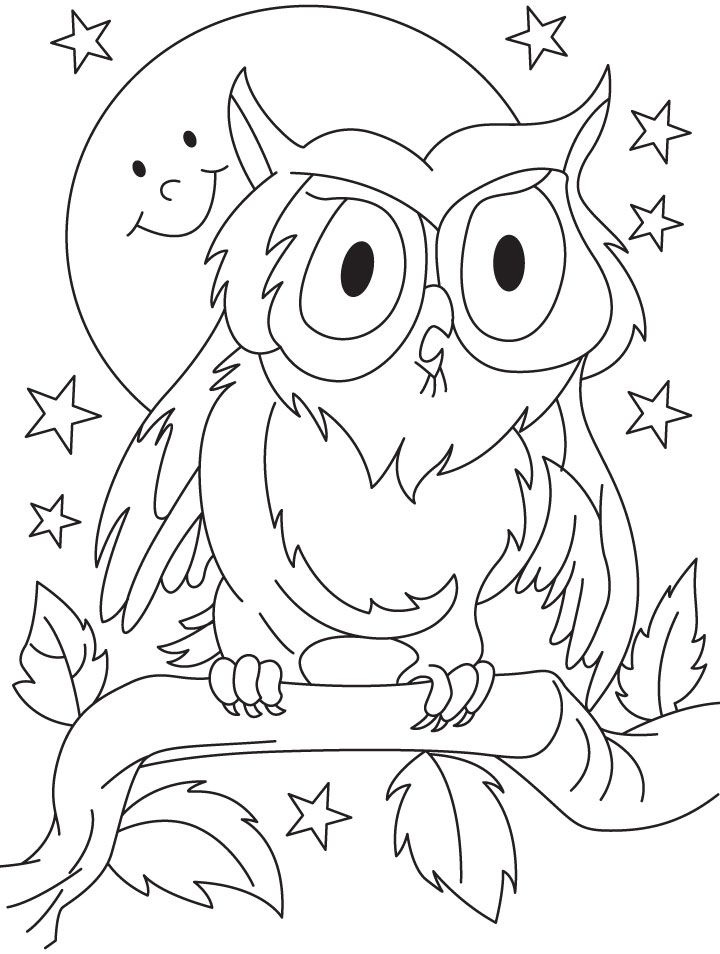 owl-coloring-page-0021-q1
