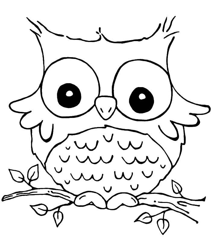 owl-coloring-page-0023-q1