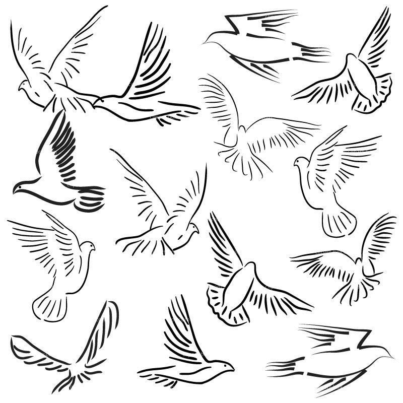 pigeon-dove-coloring-page-0002-q1
