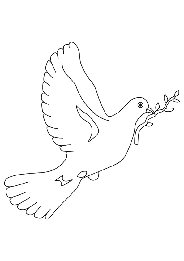 pigeon-dove-coloring-page-0031-q2