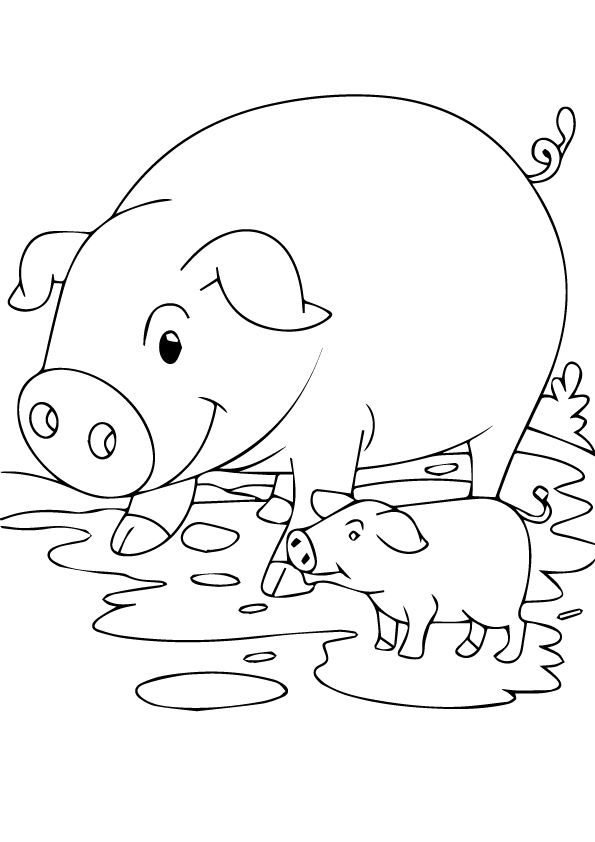 pig-coloring-page-0010-q2