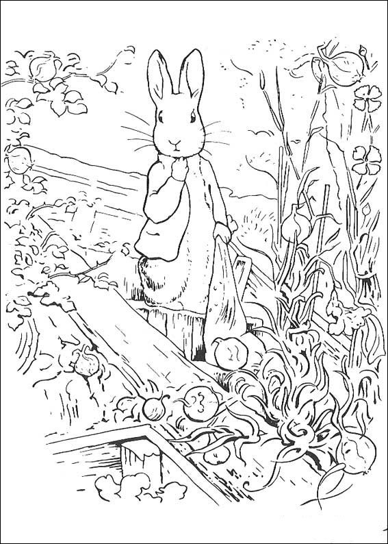 rabbit-coloring-page-0002-q5