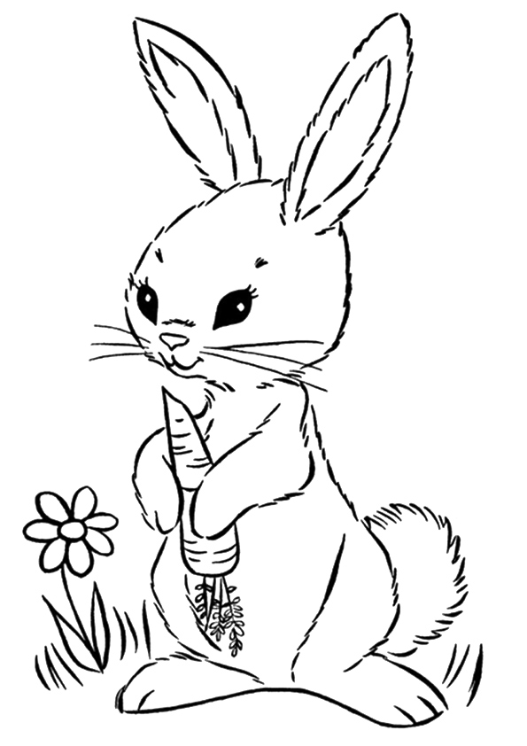 rabbit-coloring-page-0006-q2