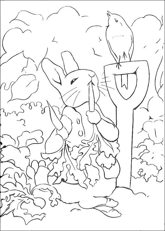 rabbit-coloring-page-0015-q5