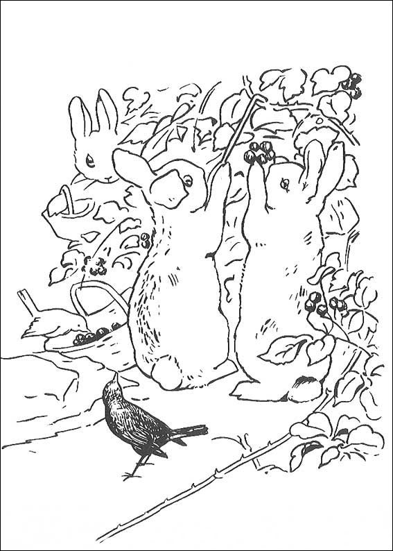 rabbit-coloring-page-0018-q5