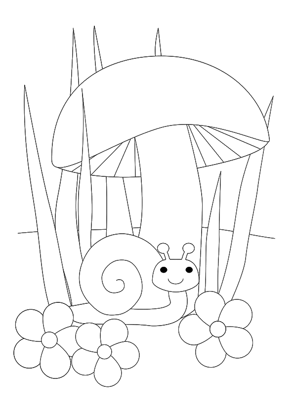 snail-coloring-page-0007-q2