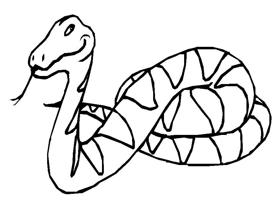 snake-coloring-page-0021-q1