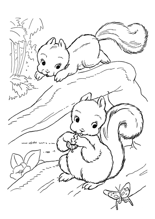 squirrel-coloring-page-0002-q2