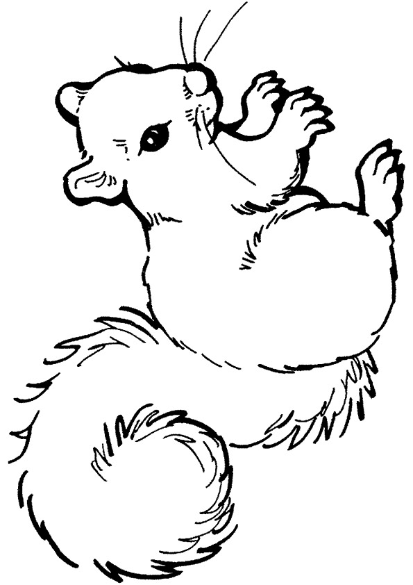 squirrel-coloring-page-0013-q2
